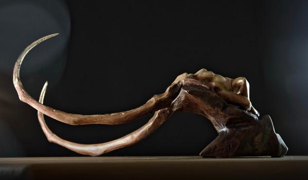 sirblondin_Sebastien Tonin_Fossil patine
