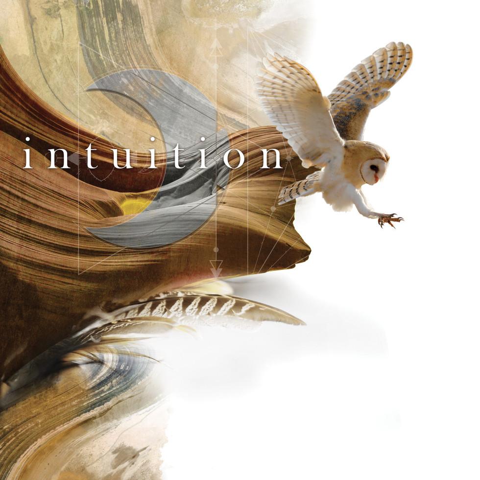 sirblondin_Sebastien Tonin_intuition1.jp