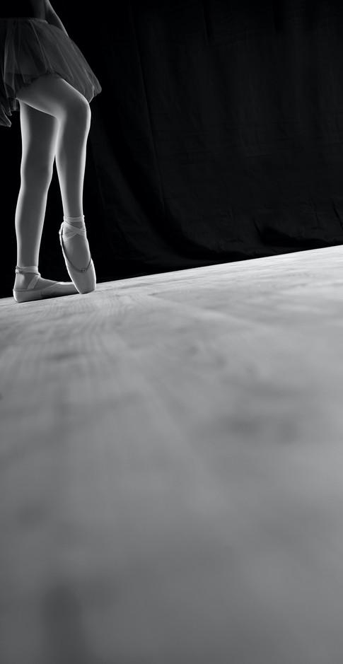 sirblondin_Sebastien Tonin_Schenal-danse