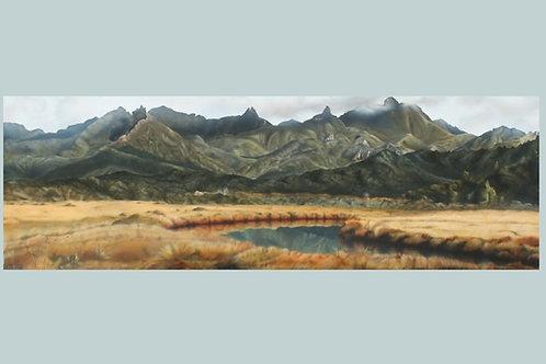 Kaitoke Wetlands