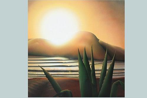 Sunrise over the Century