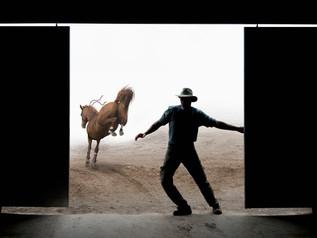 Wrangling the Cowboys