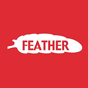 CAR CARRE FEATHER.jpg