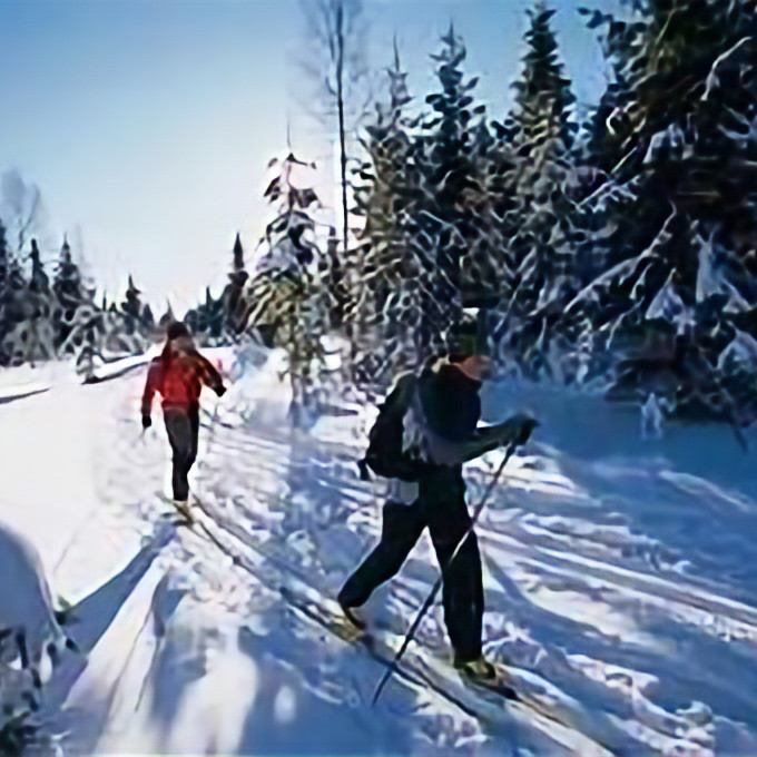 Cross Country Skiing at Rocky Lake