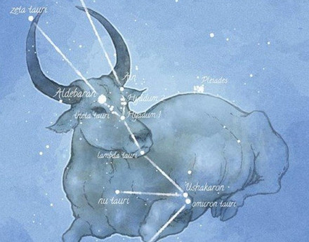 Vedic Astrologer: The Red Star of Rohini