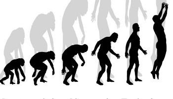 Alexander monkeys.jpg