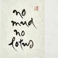 No Mud No Lotus S.jpg