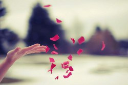 The Guest Blog: Can You Let Go More