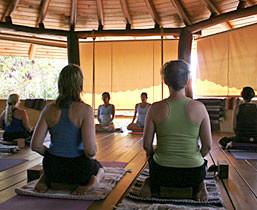 Class Comes To You Via Yoga Sampler