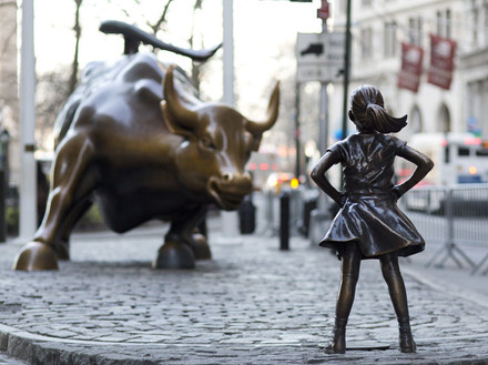 Bull And Girl