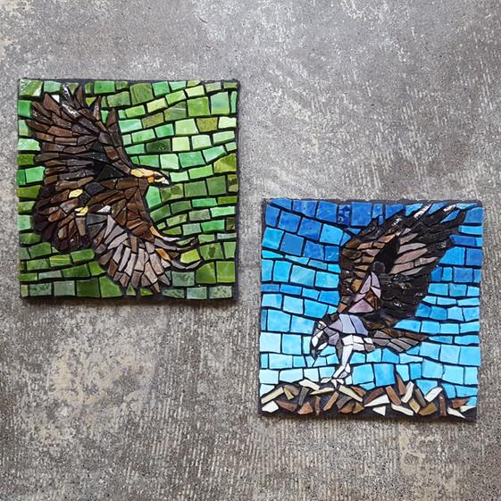 Golden Eagle & Osprey (pair)