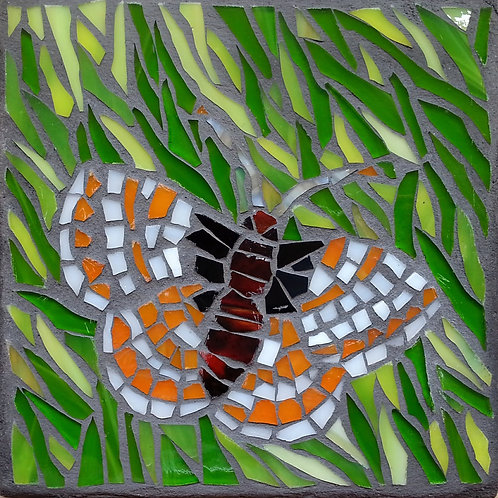 Endangered butterfly: Bay Checkerspot