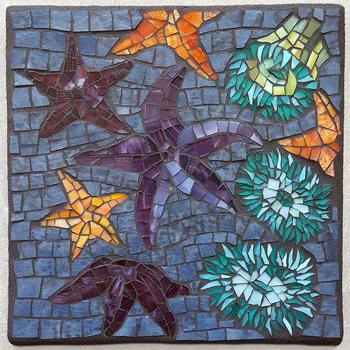 Mosaic Tidepool @ Sitka Center