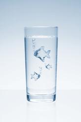 F(r)ischwasser.jpg