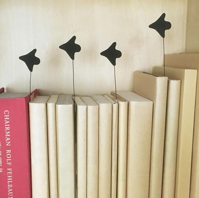 本棚を飛ぶ鳥_2代目.jpg