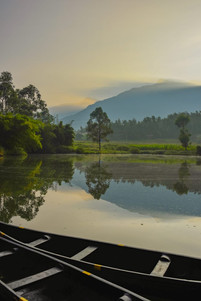 The Camp Cardamom pond and vallams