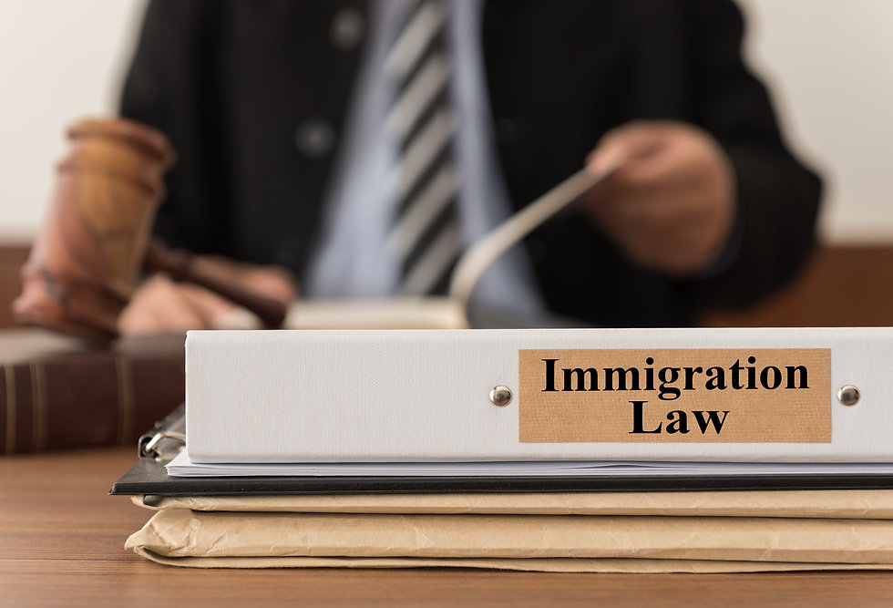 criminal and immigration lawyer near me