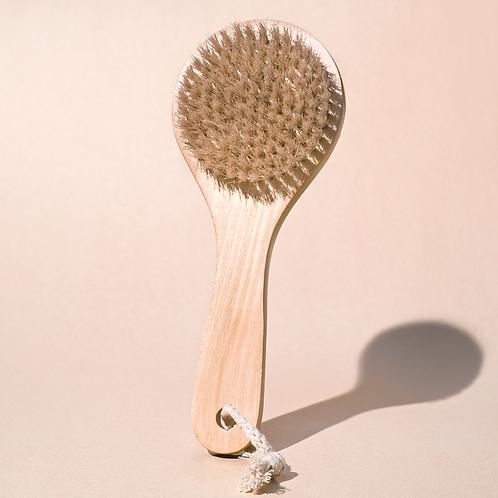 Dry brush Midnight paloma