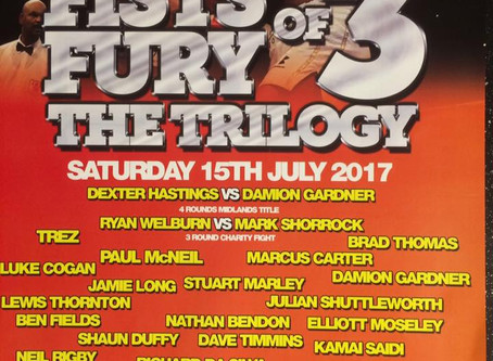 Fists of Fury 3 (The Trilogy) Show Review