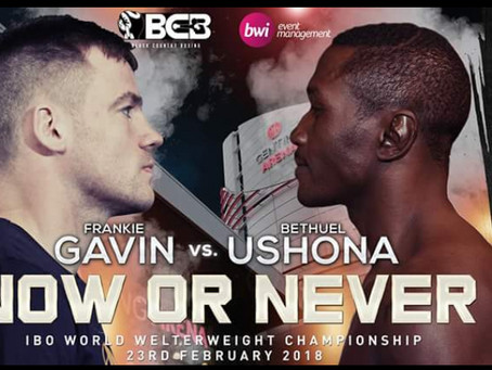 Two IBO Continental titles added to Genting Arena Show
