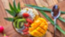 Organic-Ocean-smoothies-vegan-healthy-ve
