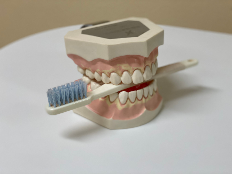 Zahnbürste