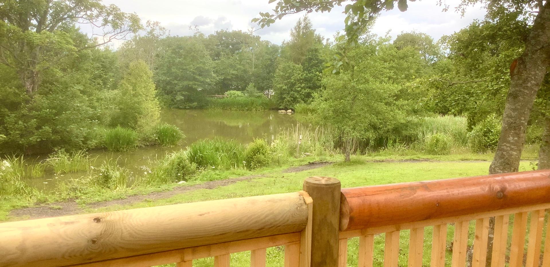 Swan Log Cabin