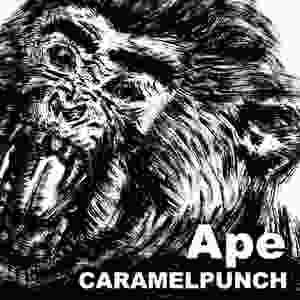 9th Single「Ape」