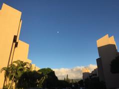 Man and Moon