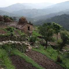 A typical Kumaoni house