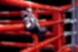 boxing image .png