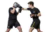website boxing PNG .png