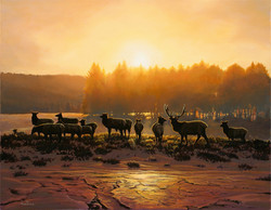 Winter Evening on the Firehole