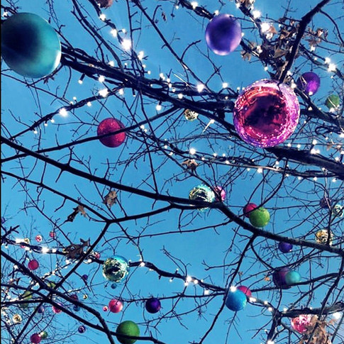 Add stunning coloured baubles to your real trees for extra festive fabulousness!