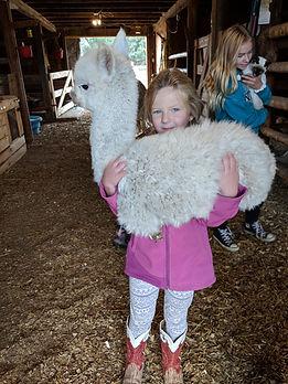 holding alpaca.jpg