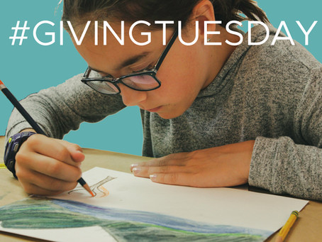 With the help of 2 matching sponsors, the VPAG successfully raises $6920 for Giving Tuesday.