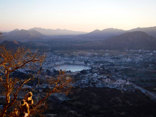 A Guide To One Day In Pushkar