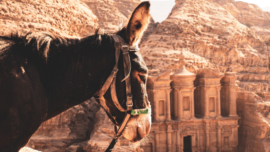 Nice View - Jordan