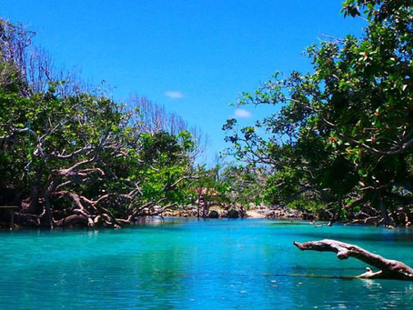 What to do in Port Vila?