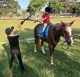 Horse Archey, Mounted Archery, Horseback Archery, Horse Archer, Mounted Archer, Medieval Horse Sports Australia, melee, sword, horse combat