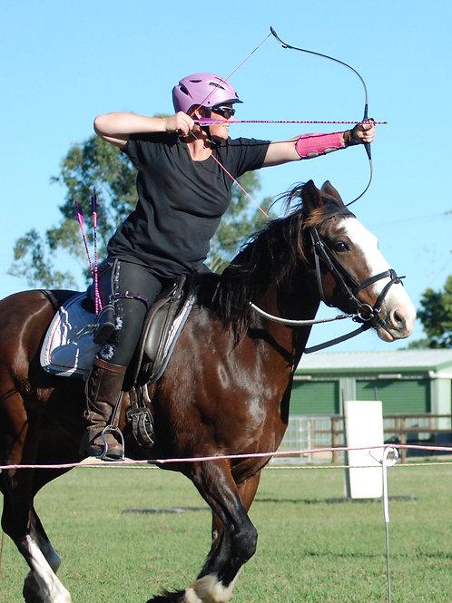 Christchurch NZ Horse Archery Clinic