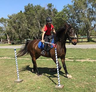 Horse Archey, Mounted Archery, Horseback Archery, Horse Archer, Mounted Archer, Medieval Horse Sports Australia, sword, rings,