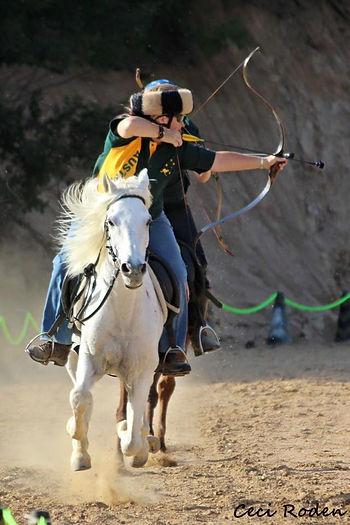 Horse Archery, Horseback Archery, Mounted Archery, Mogu