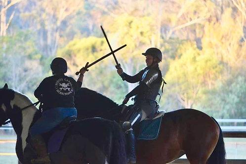 Knight School - Medieval Skill at Arms Clinic 24 October