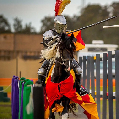 Joust Camp 2020 - Cancelled due to COVID