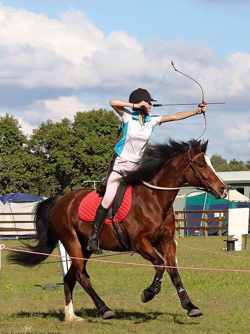 Brisbane South Horse Archery Clinic - TBA