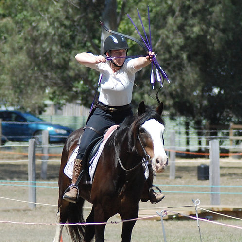 Tarago NSW Horse Archery Clinic - Cancelled due to COVID