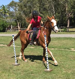 Horse Archey, Mounted Archery, Horseback Archery, Horse Archer, Mounted Archer, Medieval Horse Sports Australia, sword, jousting, sword rings, low rings,