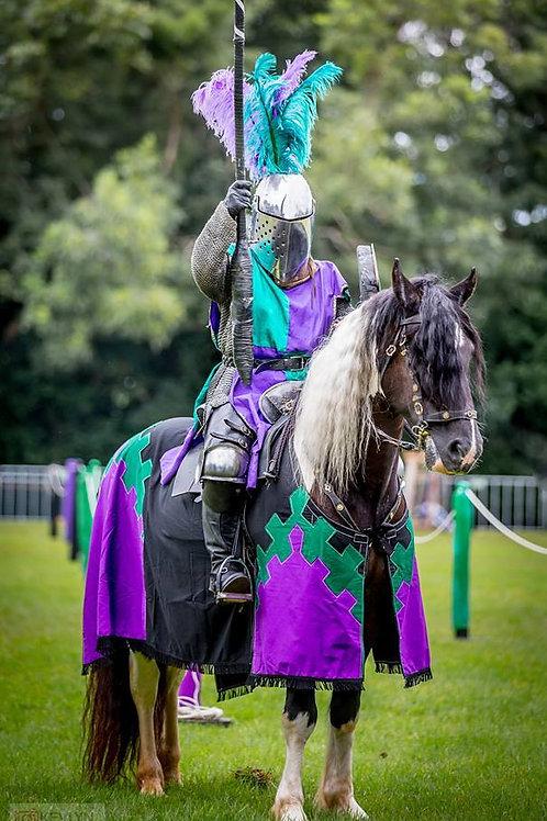 Purple, Green & Black Caparison, Tabards & Plume
