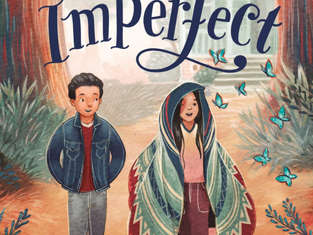 THE MAGICAL IMPERFECT COVER REVEAL with Mr. Schu!